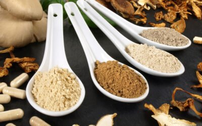 What Does Mushroom Powder Taste Like? And How to Use It